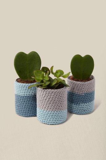 Kit crochet -  Cuido mis plantas