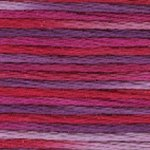 Pearl Cotton Variations 4211
