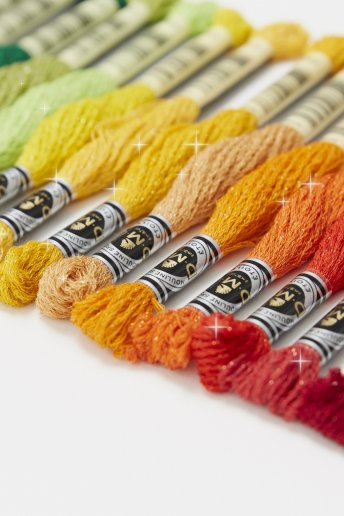 Mouliné Étoile Embroidery Thread