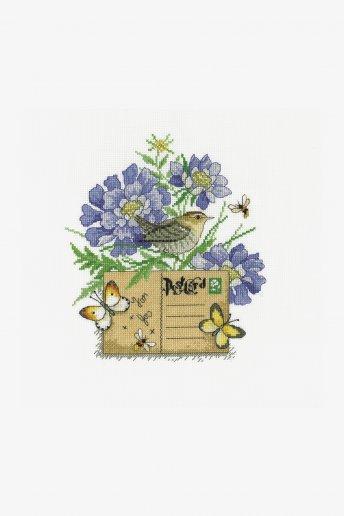 Little Bird Post Card Kit