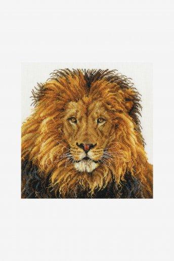 Kit l'orgoglio del leone bk1668