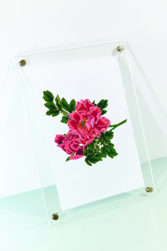 Roses rose décorative - Diagramme point de croix