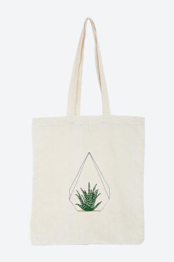 Aloe - pattern