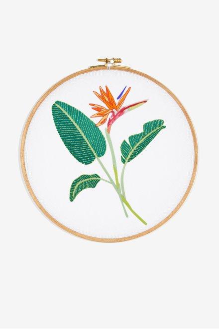 Diagramme motif Oiseau du paradis