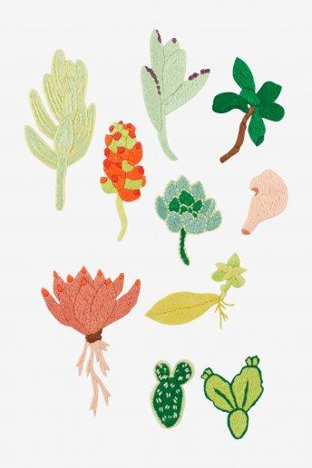 Plantes grasses diverses - motif broderie