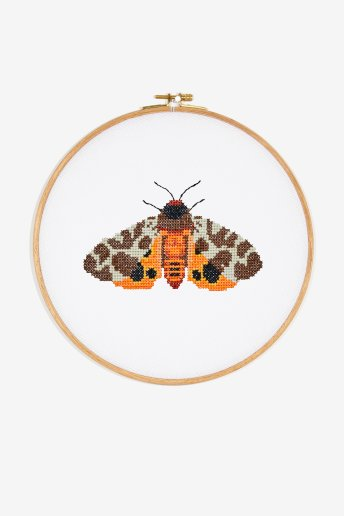 Papillon de nuit - Diagramme point de croix