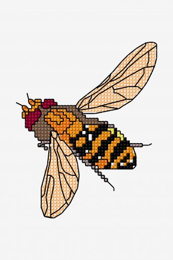 Hoverfly - pattern