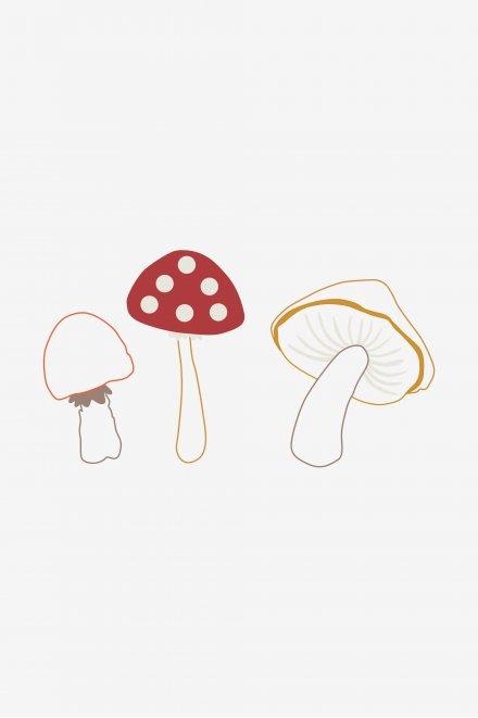Cogumelos - ESQUEMA