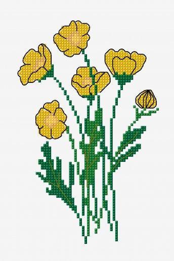 Buttercups - pattern