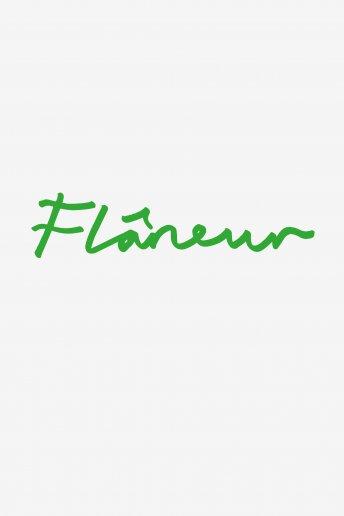 Flaneur - pattern