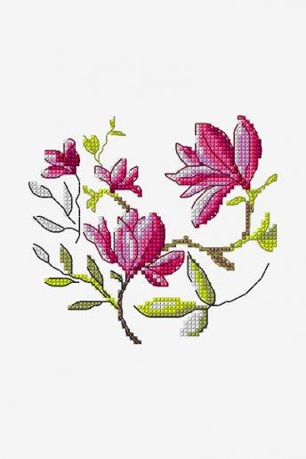 Magnoólias - ESQUEMA