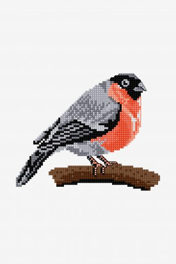 Bullfinch - pattern