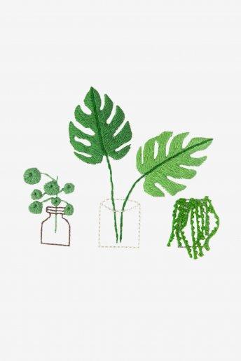 Tropical Plants - pattern