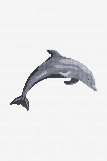 Dolphin - pattern