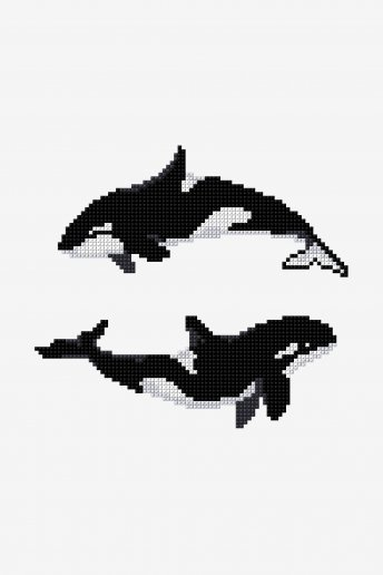 Orca Killer Whale - pattern