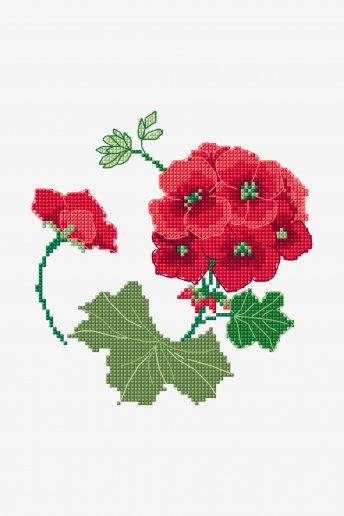 A Red Geranium - pattern