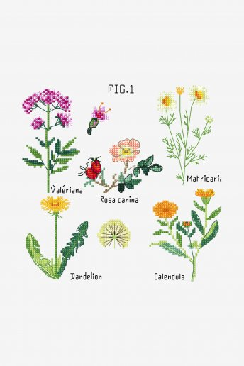 Botanical Medicinal Plants