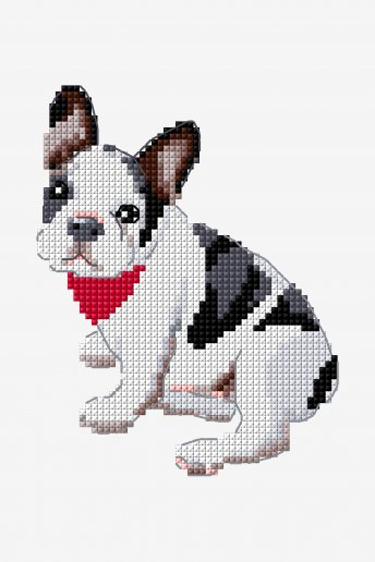 French Bulldog - pattern