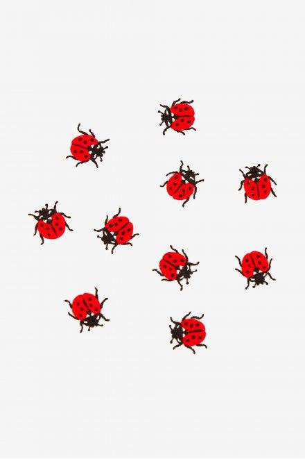 Ladybirds - Pattern