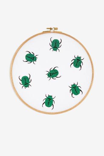 Escaravelhos - Esquema