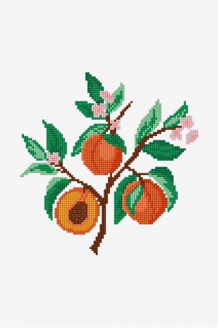 Peaches - Pattern