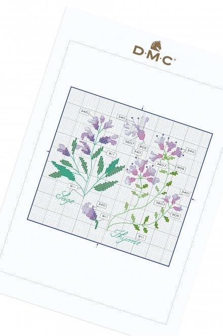 Herbs - Thyme